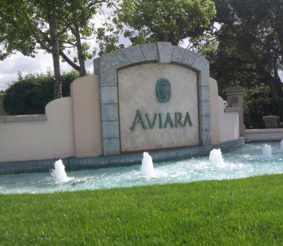 Aviara Point Fountain