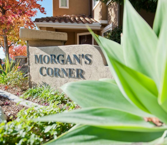Morgans Corner Welcome